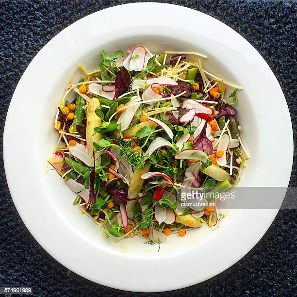 salad with asparagus and radish - green salad stock pictures, royalty-free photos & images