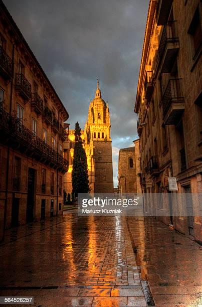 salamanca cathedral and rua mayor street sunrise - rua fotografías e imágenes de stock