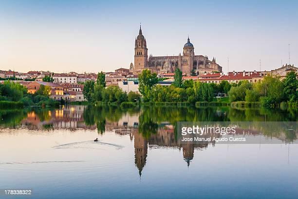 Salamanca Reflections