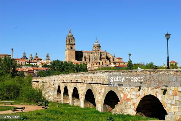 Roman bridge stretching across the river Tormes In the background the cathedral Declared a UNESCO World Heritage Site in 1988 Salamanca is on one of...