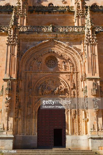 Salamanca, Salamanca Province, Spain. Cathedral door, northern side. Puerta de Ramos or de las Palmas. Door of the Branches or of the Palms.