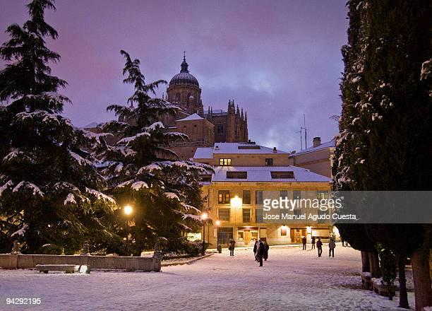 Salamanca view