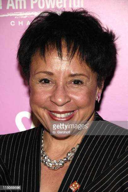 CEO Salamander Hospitality President of the Washington Mystics Sheila Johnson Attends the Cocktail Reception in Honor of Sarah Michelle Gellar at Sky...