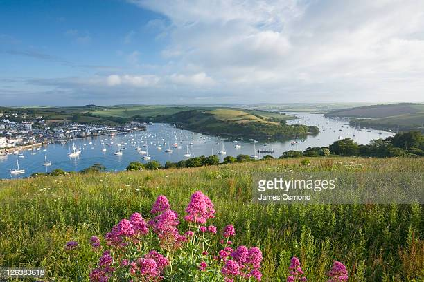 salcombe harbour and kingsbridge estuary from east portlemouth. south hams district. devon. england. uk. - estuary stock pictures, royalty-free photos & images