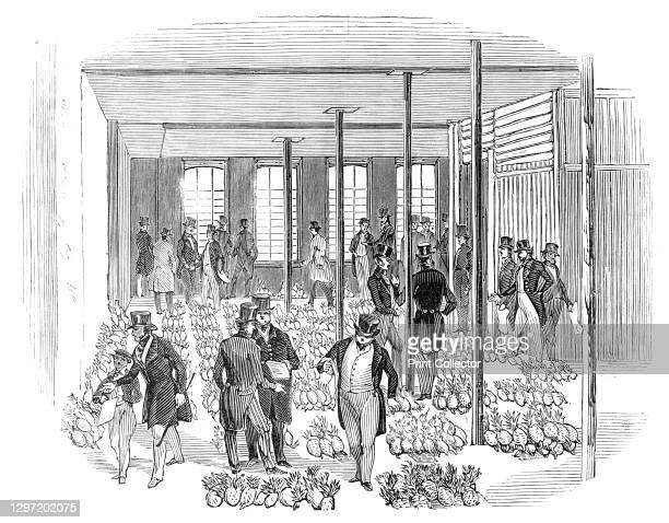 Sale of West India Pine Apples, 1844. Scene in a London warehouse during the '...sale of upwards of 2700 West Indian Pine-Apples, by Messrs. Keeling...