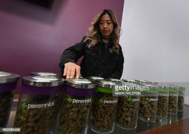 A salesperson prepares an order of marijuana products at the Perennial Holistic Wellness Center which is a medicinal marijuana dispensary in Los...