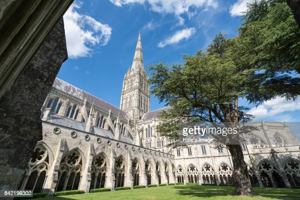salisbury cathedral - worcestershire stock photos and pictures