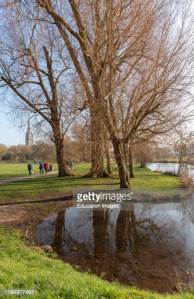 Salisbury Wiltshire England UK The Bishops Grounds and River Avon overlooked by Salisbury Cathedral during winter