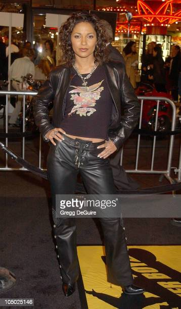 Salli Richardson during Biker Boyz Premiere at Mann's Chinese Theatre in Hollywood California United States