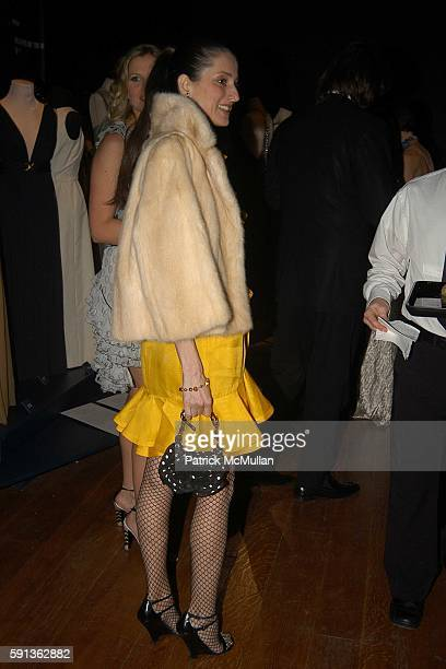 Sally Albemarle attends The Director's Council of the Museum of the City of New York Winter Ball Sponsored by Yves Saint Laurent at Museum of the...