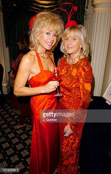 Sally FarmiloeNeville and Liz Brewer during Women In Red Dinner And Party In Aid Of Cancer Research at The Berkeley Hotel in London Great Britain