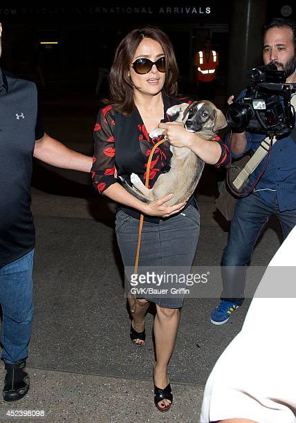 Salma Hayek is seen at LAX on July 19 2014 in Los Angeles California