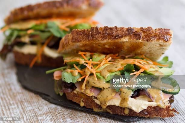 Salmon and vegetables sandwich