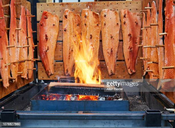 Salmon being smoked in a tradtional Finnish way called Loimulhi