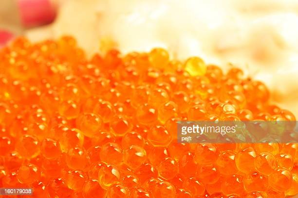 Salmon caviar close up
