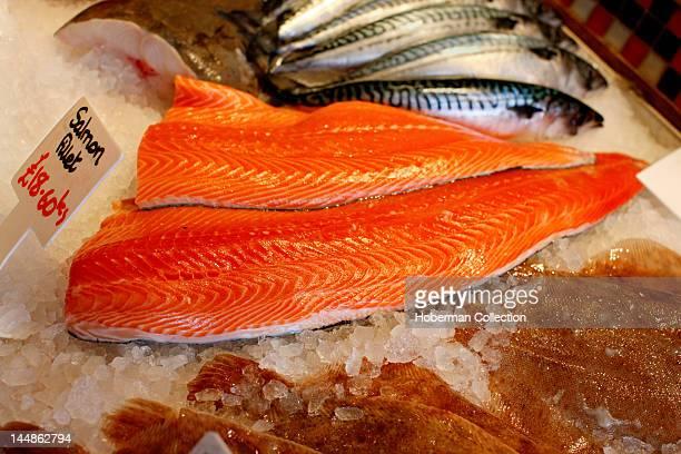 Salmon Fillets, Fish Market, London