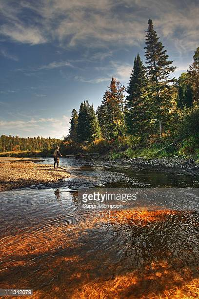 salmon fisherman - new brunswick canada stock pictures, royalty-free photos & images