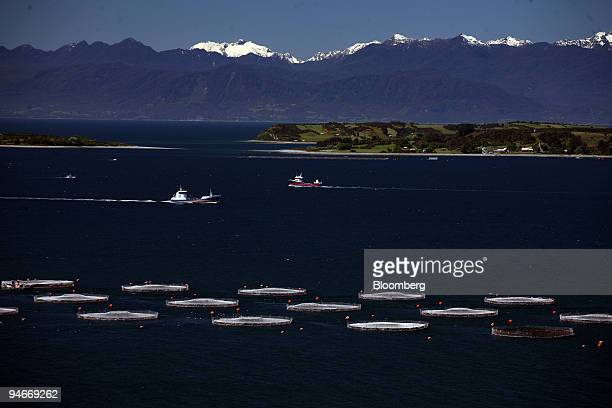 Salmon jails of Marine Harvest company are seen in waters of Huelmo Bay with the Andes moutain range in the background in the ocean near Puerto Montt...