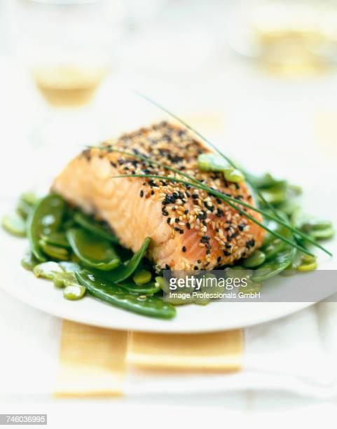 Salmon steak with sesame seeds