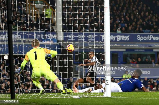 Salomon Rondon of Newcastle United scores his team's first goal past Jordan Pickford of Everton during the Premier League match between Everton FC...