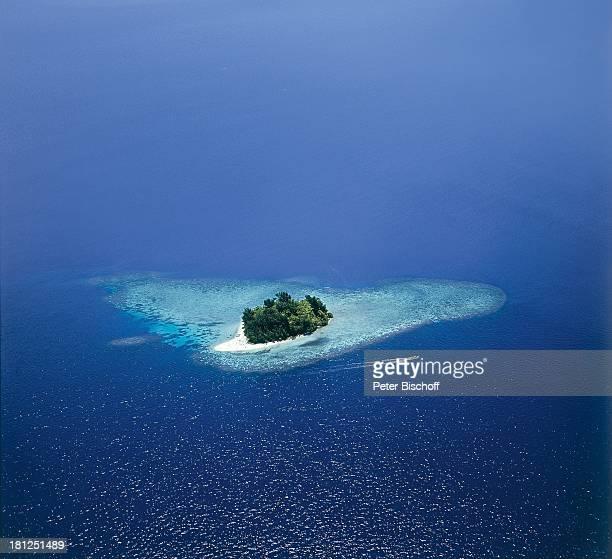 Salomonen Südsee Reise Meer Wasser Insel Luftaufnahme Bäume Pflanzen