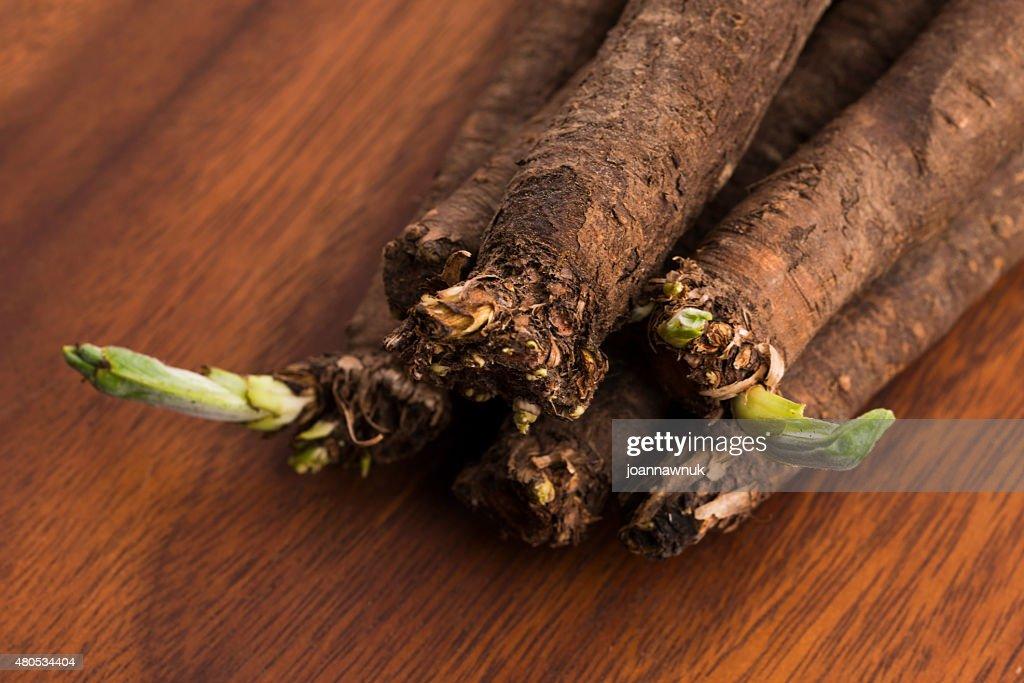 salsify vegetables on wood : Bildbanksbilder