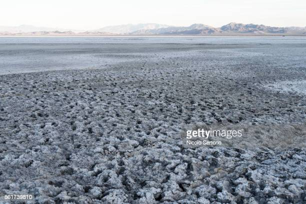 salt and dried lake bed in the desert - カリフォルニア州ベーカー ストックフォトと画像