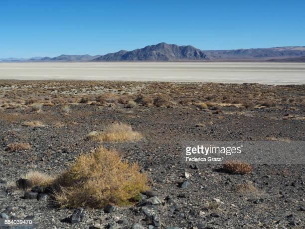 Salt Basin At Black Rock Desert, Nevada