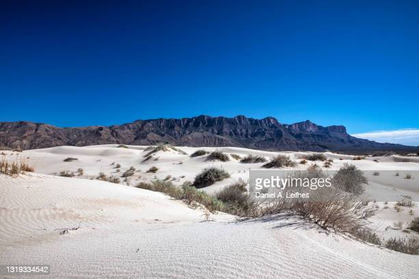 salt basin dunes at guadalupe mountains national park - chihuahua desert stock pictures, royalty-free photos & images