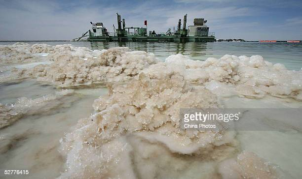 Salt crystals grow in the Chaerhan Salt Lake near a Qinghai Salt Lake Industry Group Co potassium chloride production facility May 8 2005 in Golmud...