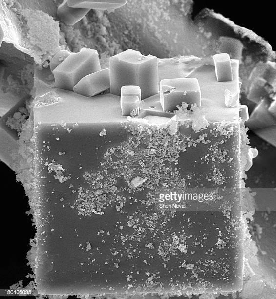 salt cube, sem - microscopia eletrônica de varredura - fotografias e filmes do acervo