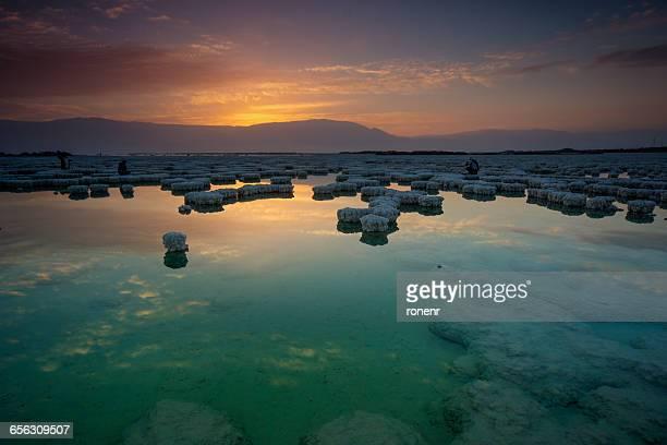 salt deposits in dead sea, israel - mar muerto fotografías e imágenes de stock