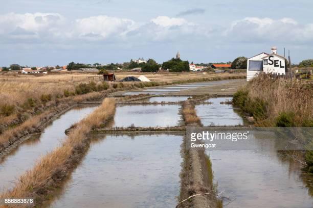 étangs d'évaporation de sel de noirmoutier - noirmoutier photos et images de collection