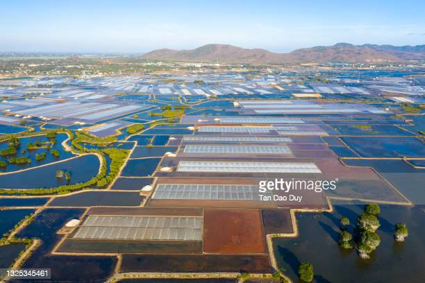 salt farm from vietnam - aerial view - hd stock pictures, royalty-free photos & images
