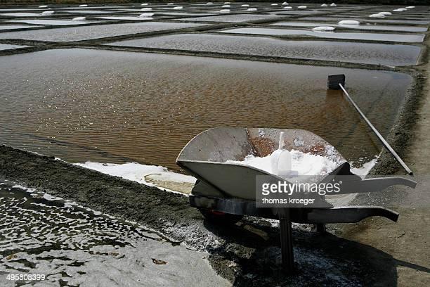 Salt farm, Noirmoutier-en-l?Ile, Ile de Noirmoutier, Pays de la Loire, France