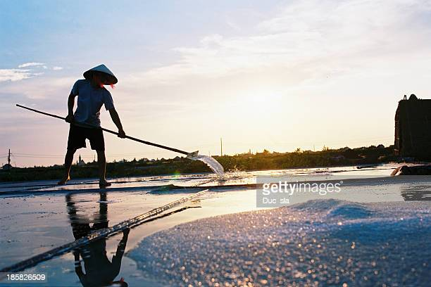 salt farm - ナムディン ストックフォトと画像