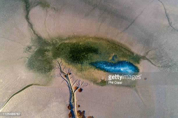 salt flat aerial - townsville queensland stock pictures, royalty-free photos & images
