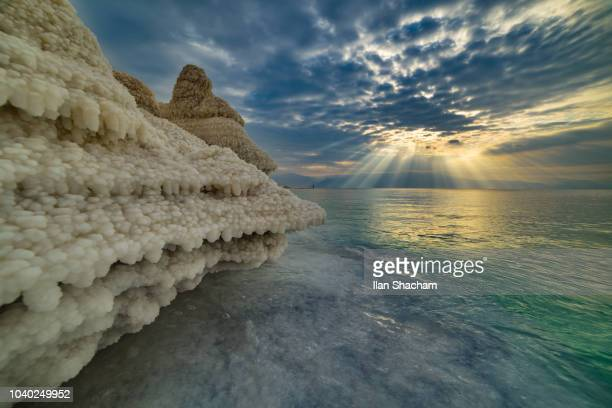 salt formations at the dead sea at sunrise - dead sea stock pictures, royalty-free photos & images
