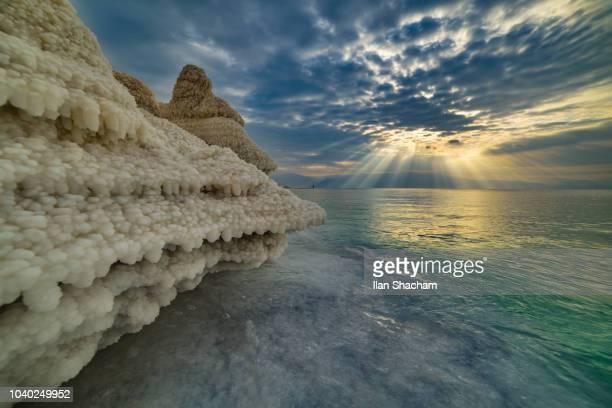 salt formations at the dead sea at sunrise - mar muerto fotografías e imágenes de stock