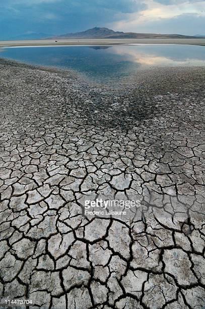 salt lake and antelope island - great salt lake stock pictures, royalty-free photos & images