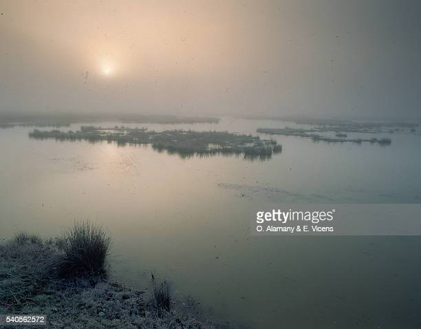 salt lake in misty sunlight - alamany fotografías e imágenes de stock