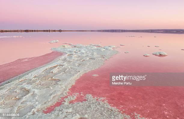 salt lake pink (salinas de torrevieja) - alicante fotografías e imágenes de stock