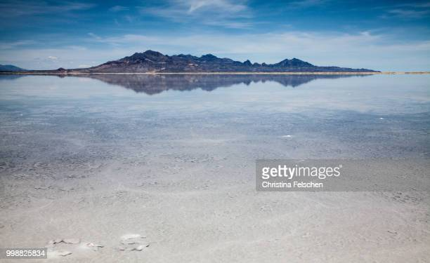salt lake, utah - christina felschen stock photos and pictures