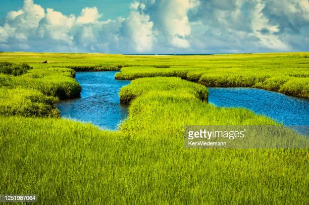 salt marsh at mid tide - massachusetts stock pictures, royalty-free photos & images
