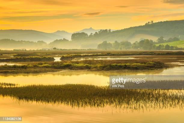 Salt marshes at dusk Cerroja water mill Santona Victoria and Joyel Marshes Natural Park Cantabria Spain Europe