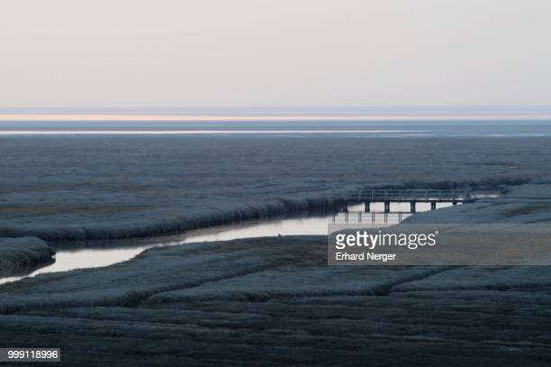 Salt marshes in Westerhever after sunset, Schleswig-Holstein, Germany