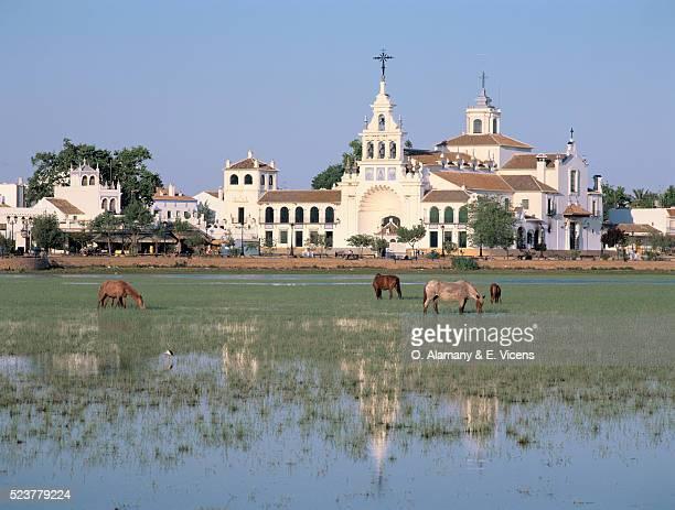 Salt Marshes Outside Spanish Village