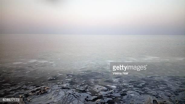 Salt marsh-Great Rann of Kutch-Gujarat