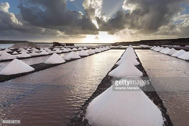 salt miner in lanzarote island - lanzarote stock pictures, royalty-free photos & images