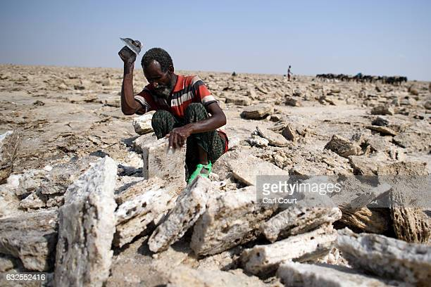Salt miner works in the heat as he digs out salt blocks by hand in the Danakil Depression on January 22, 2017 in Dallol, Ethiopia. The depression...